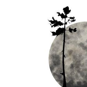 Bloom On Moon