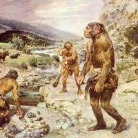 Neanderthal News.com.br