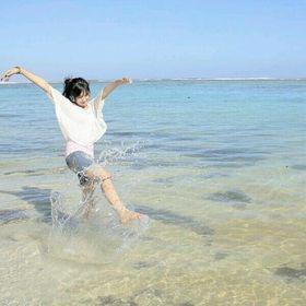 Indonesia Traveler