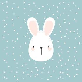 Le Petit Rabbit   Progetti grafici unici per brand creativi