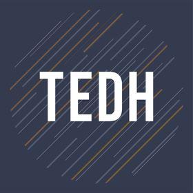 TEDH | Polimi