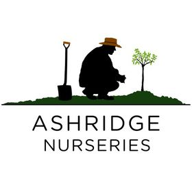 Ashridge Nurseries