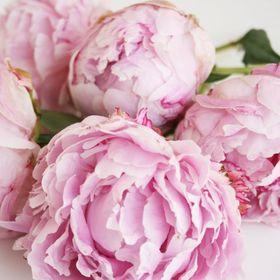 Twig & Twine Floristry