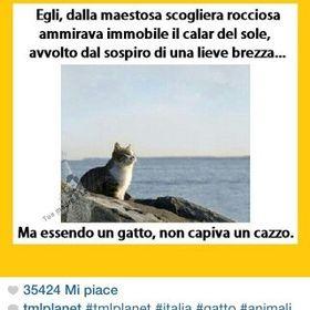 Giulia Omoretti Pezzotti