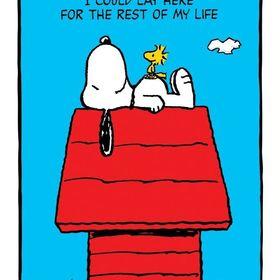 Puggle Life 🐾