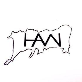 HAVN CO
