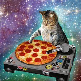 Cat hookup profile pepperonis pizza black