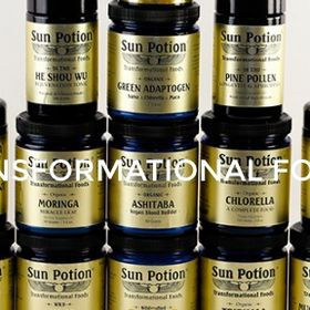 Summary Transformational Foods Sun Potion