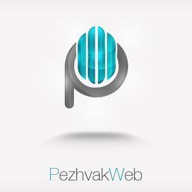 پژواک وب رویان فناوران پژواک سیستم
