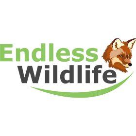 endless wildlife