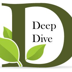 Deep Dive Body Care