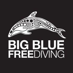 Big Blue Freediving, Koh Tao, Thailand