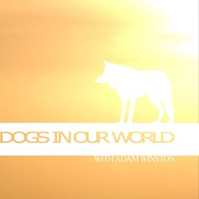 DOGS IN OUR WORLD