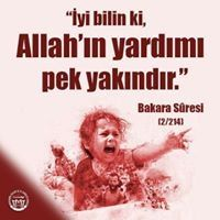 Fatih Yay
