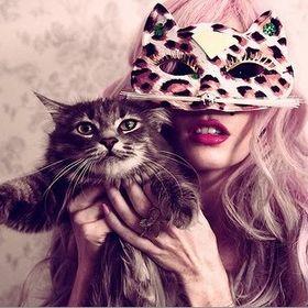 Kitty CatClaw