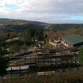 Tavistock Woodland Sawmill Ltd