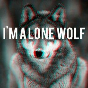Alba Wolf