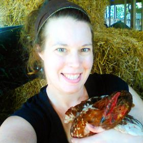 Pampered Chicken Mama | Backyard Chickens, Homesteading, Off Grid Living