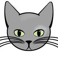 Grey Cat Lady