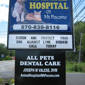 Animal Hospital of Mt. Pocono