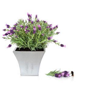 Wendy B Floral Designs