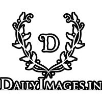 Daily Images