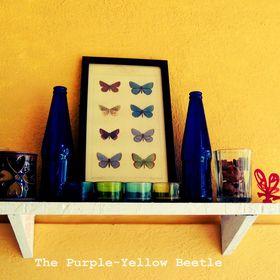 The Purple-Yellow Beetle