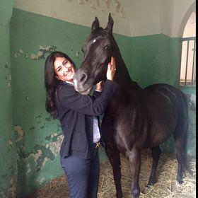 Iman El-Essawy