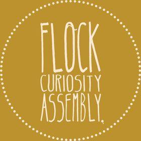 Flock Curiosity Assembly