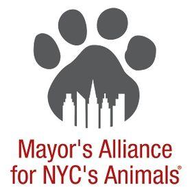 Mayor's Alliance for NYC's Animals