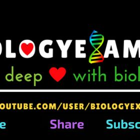 Biology 4u