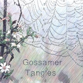Gossamer Tangles