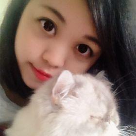 Panda Chen