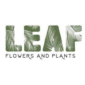 Leaf Shop