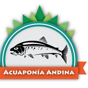 Acuaponía Andina