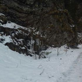 Vinter Bernadett