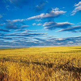 Prairie Gal