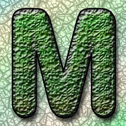 Mycohaus