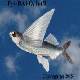 PYS-DAFO, Int'l