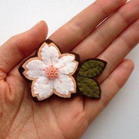 aurora jasmine