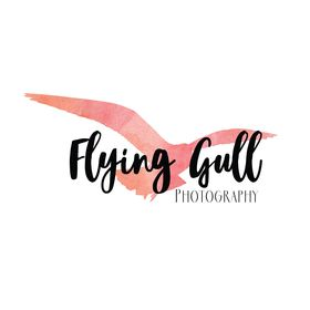 Flying Gull Photography