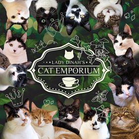 Lady Dinah's Cat Emporium (London's first cat cafe)