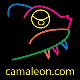 Camaleón Diseño Visual