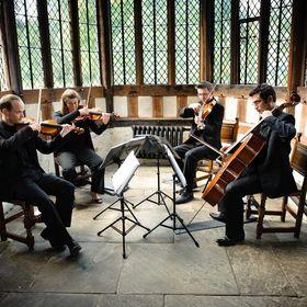 Strelitzia String Quartet