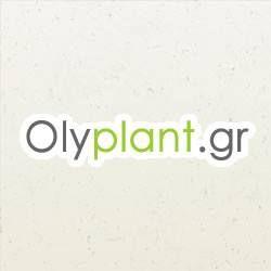 Olyplant.gr
