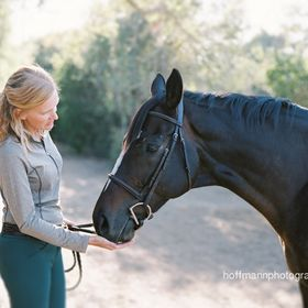 Saddle Seeks Horse by Susan Friedland
