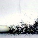 thesmokersunion the smokers union inc