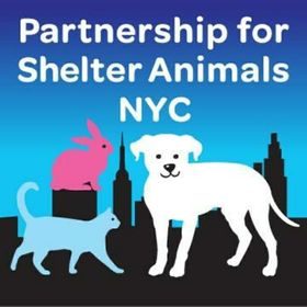 Partnership For Shelter Animals