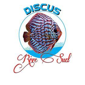 Discus Rive-Sud