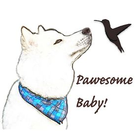 Pawesome Baby
